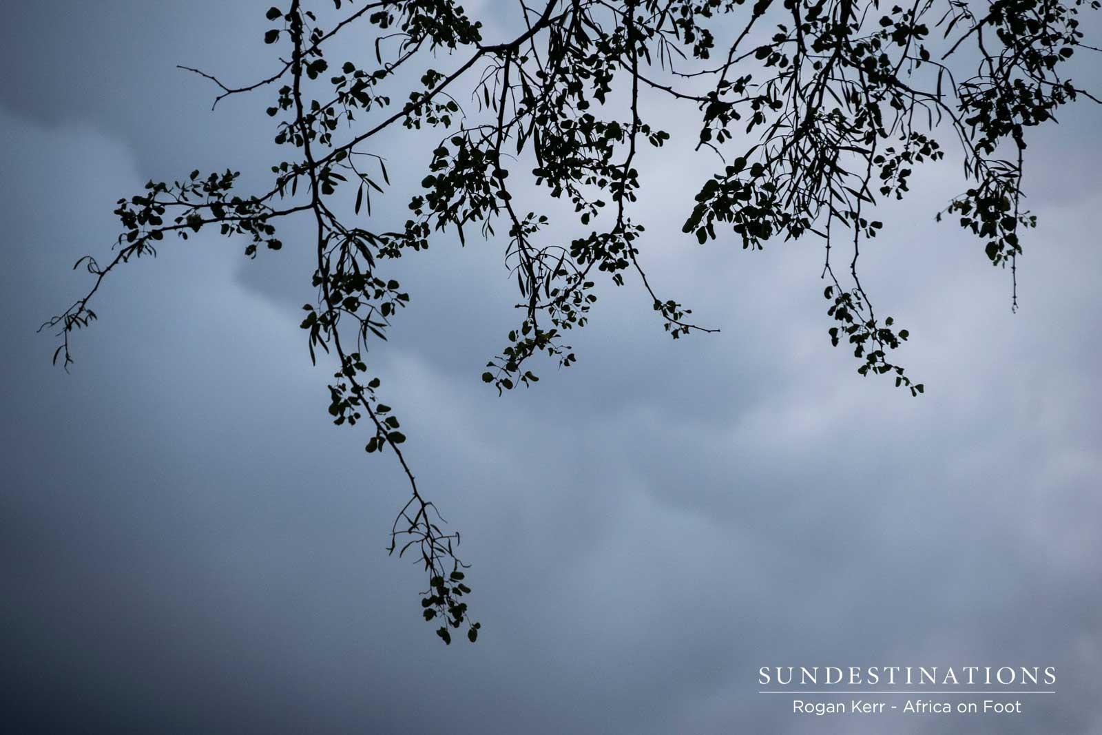 Stormy Sky in Klaserie
