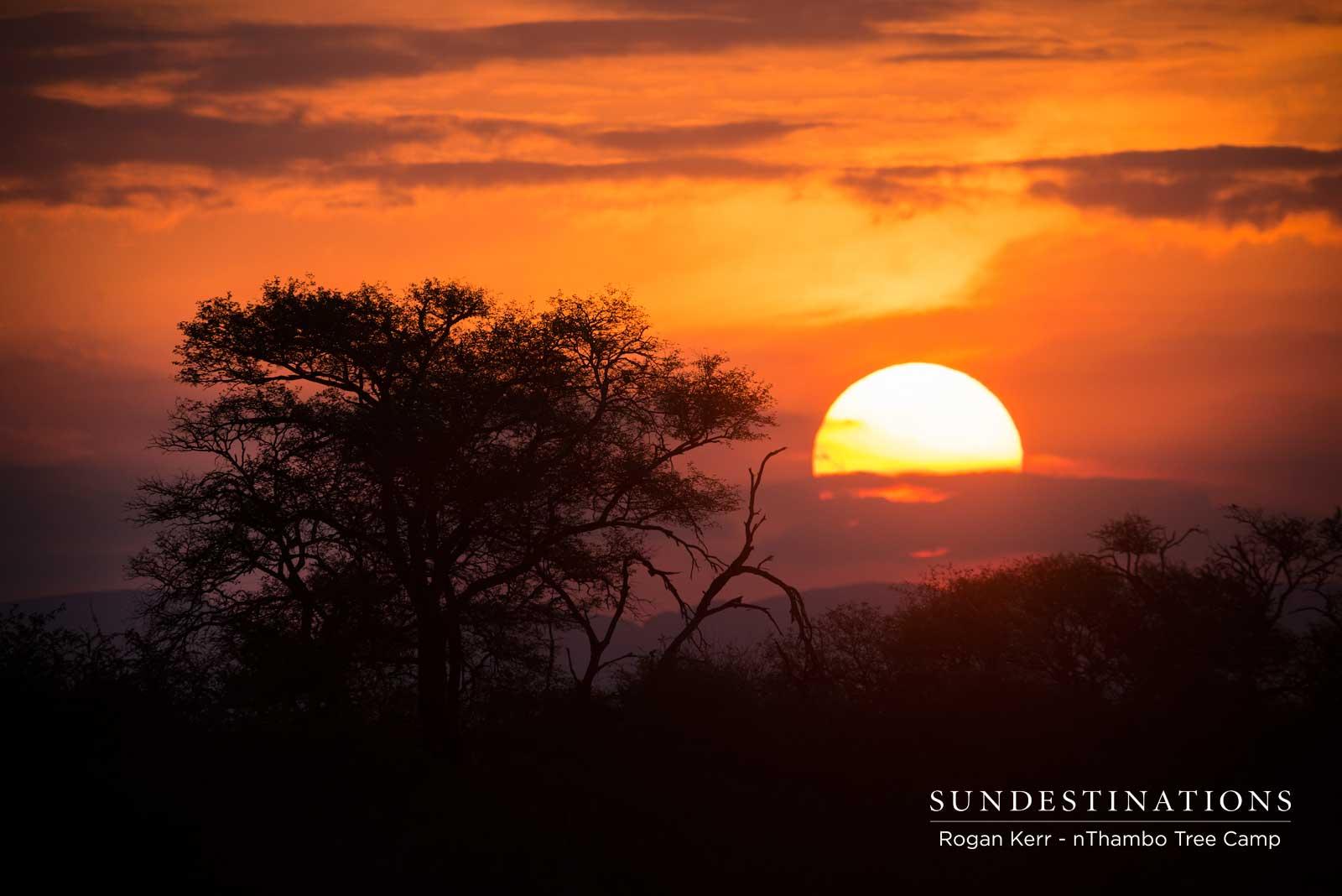 nThambo Tree Camp Sunsets