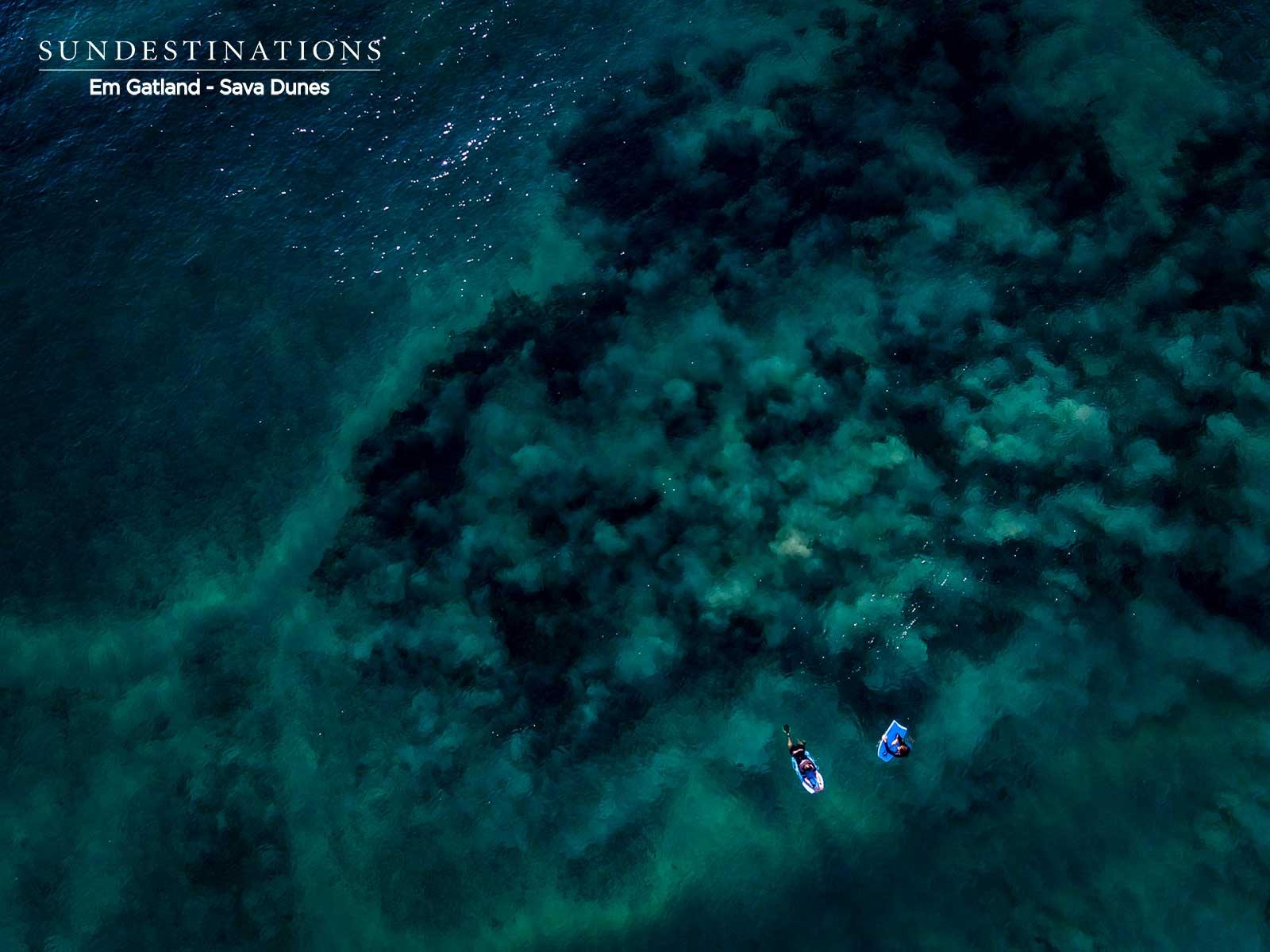 Scuba Diving in Mozambique : Plunge into Paradise