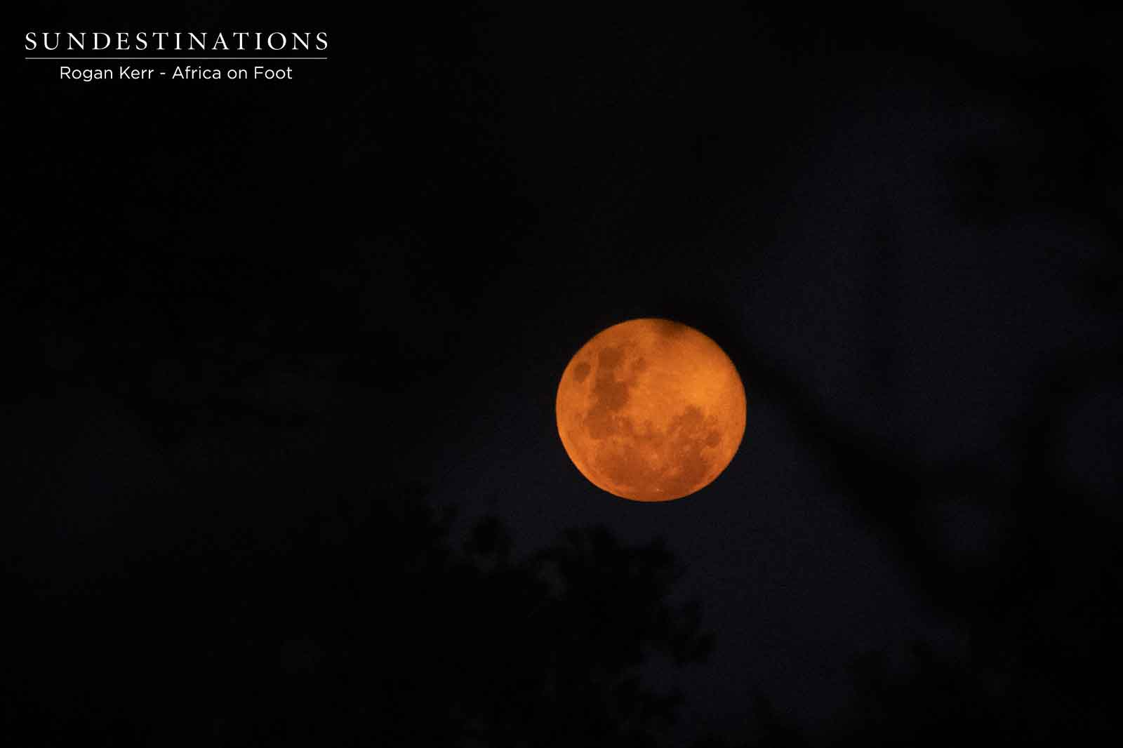 Full Moon Over the Klaserie