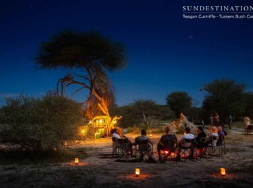 As the sun melts into the sky, shades of persimmon fill the quintessential African horizon. There is nothing more hypnotic than the sunset in Botswana, a country home to some of the world's most spectacular striking scenes of remarkable beauty. Enviably located across 365 000 hectares of rugged wilderness laden with mopane trees, and sandy […]