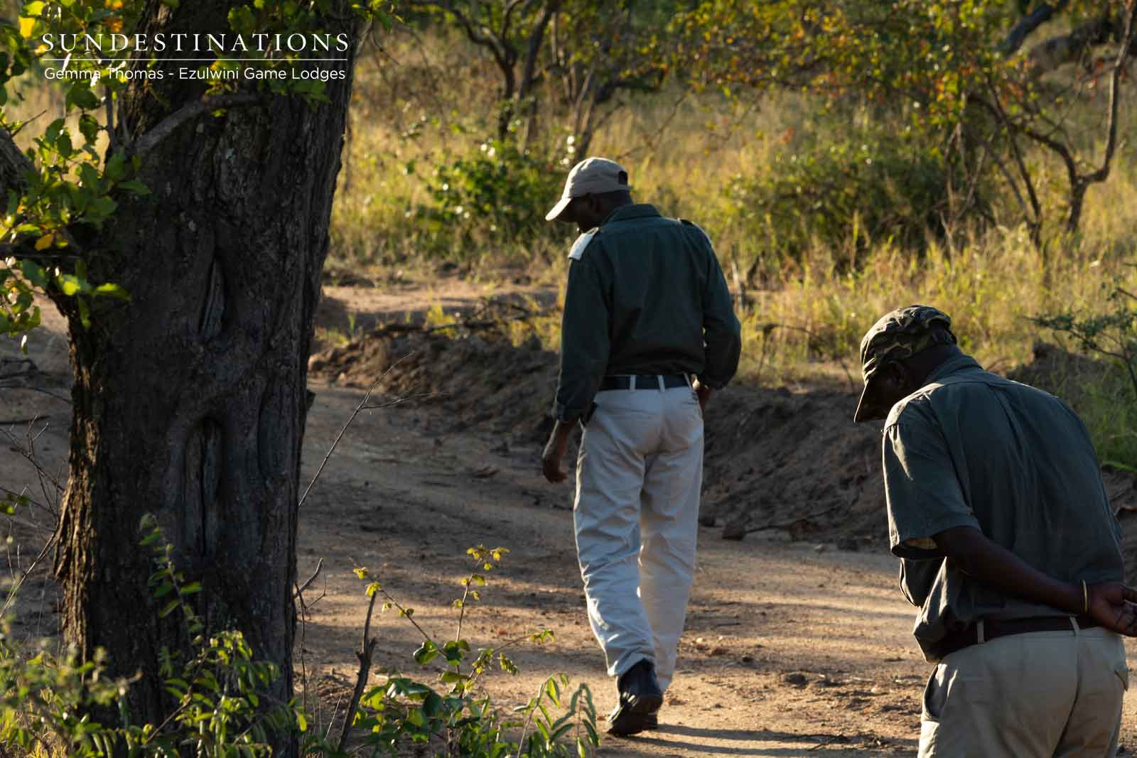 Guides and Trackers at Ezulwini Game Lodges
