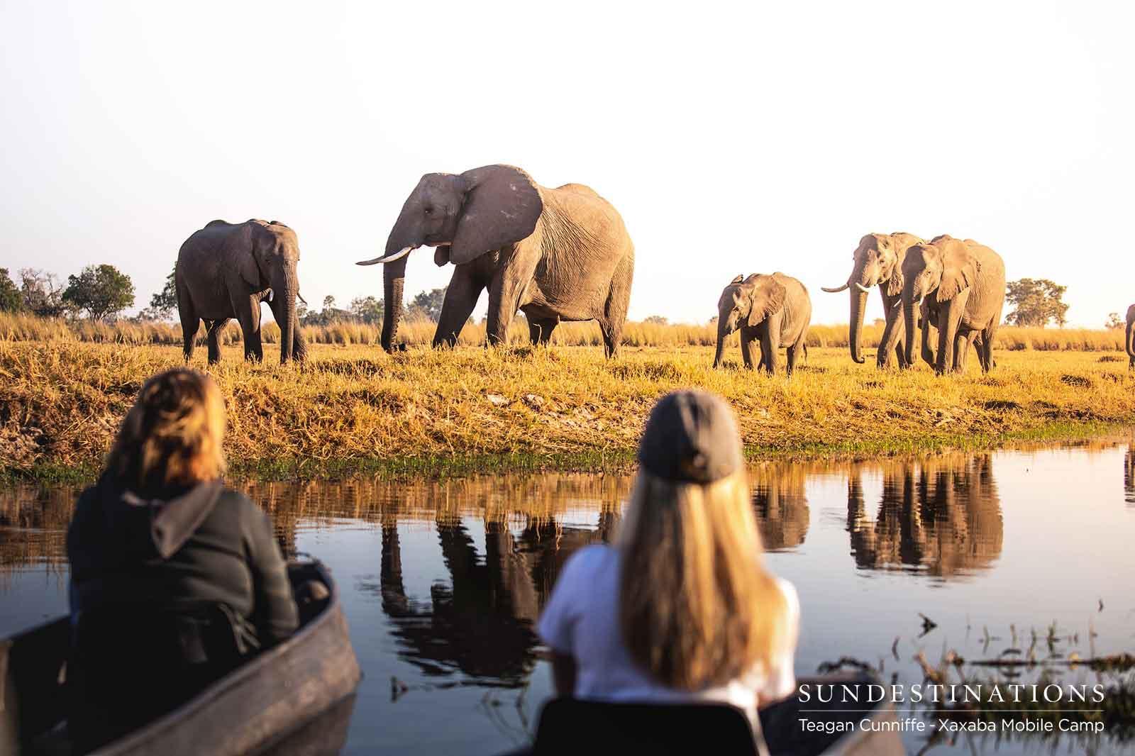 Xaxaba Mokoro Elephant Watching