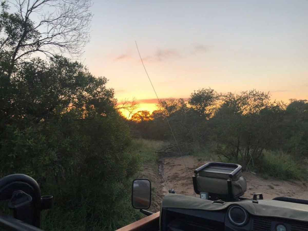 Game Drives at Umkumbe Safari Lodge
