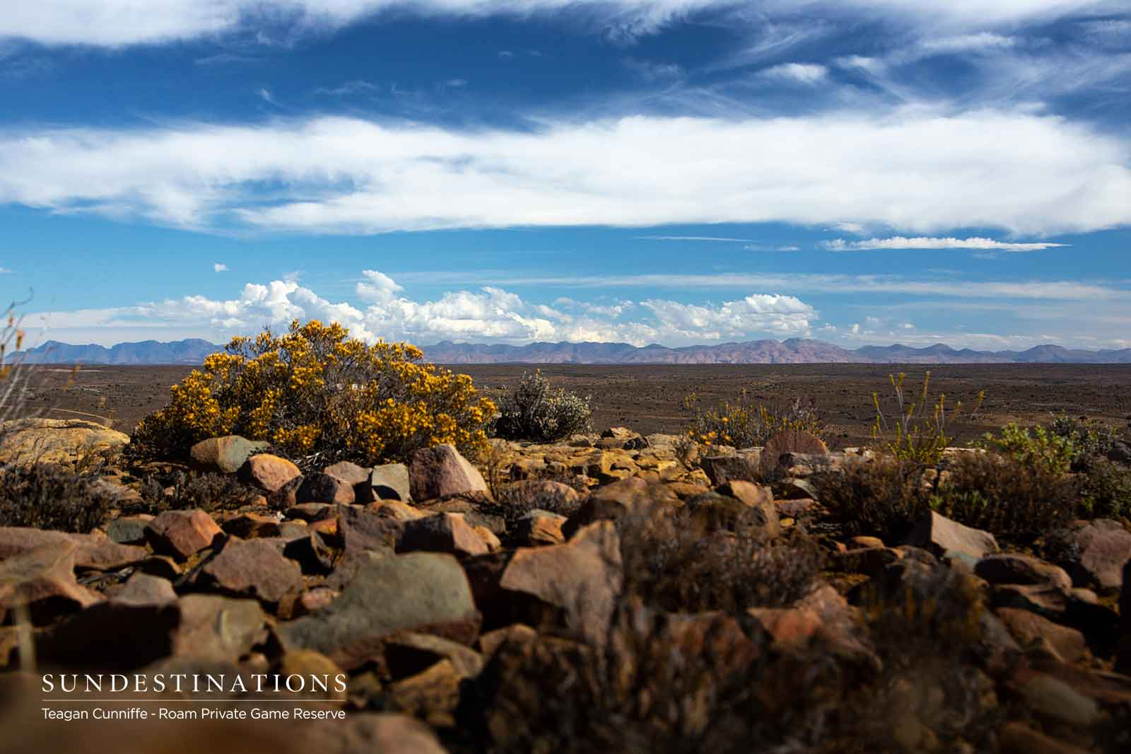 Roam Karoo Landscape