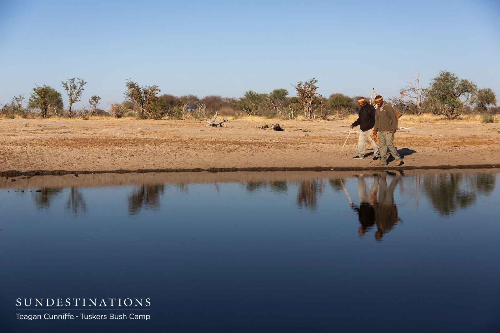 Waterhole Walks with Bushmen