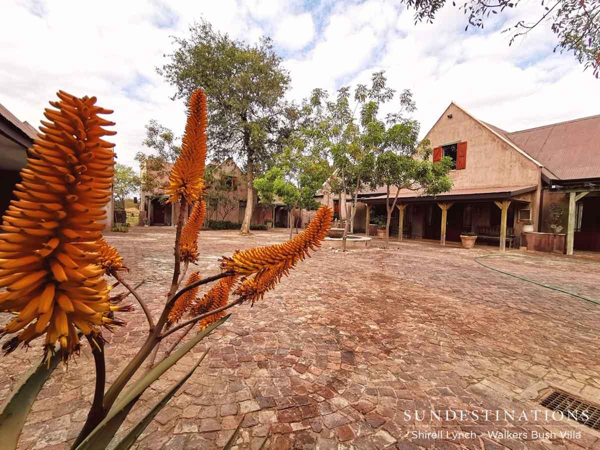 Walkers Bush Villa Entrance