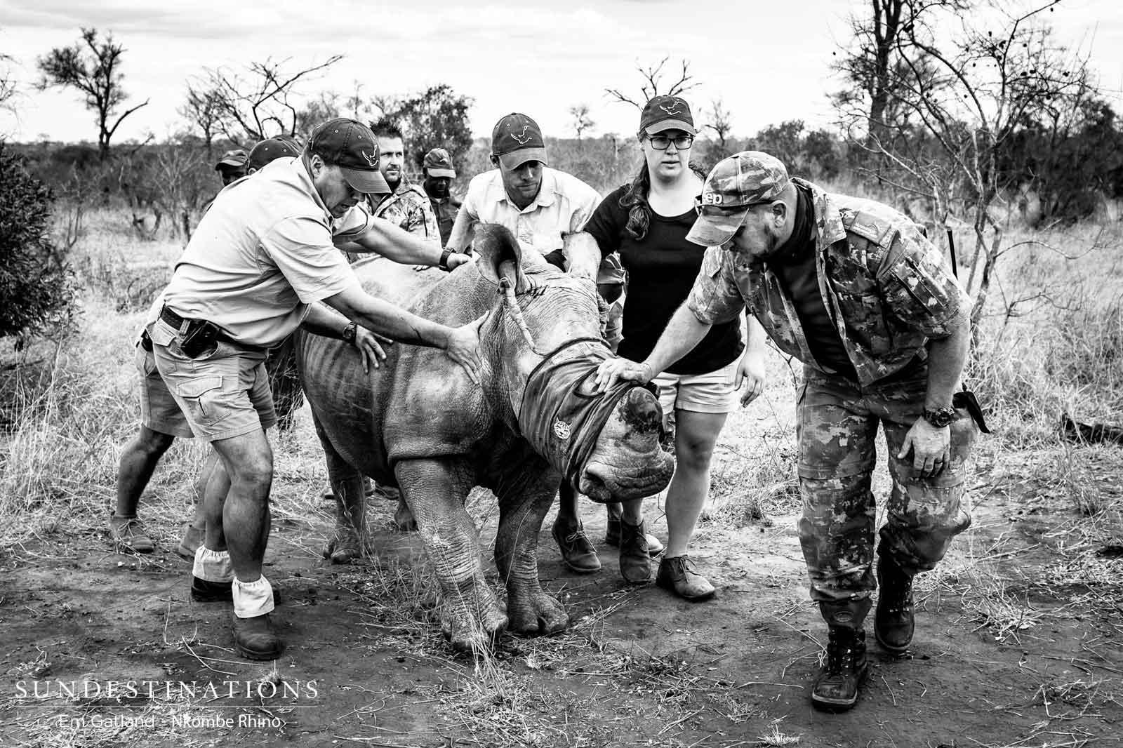Nkombe Rhino Team