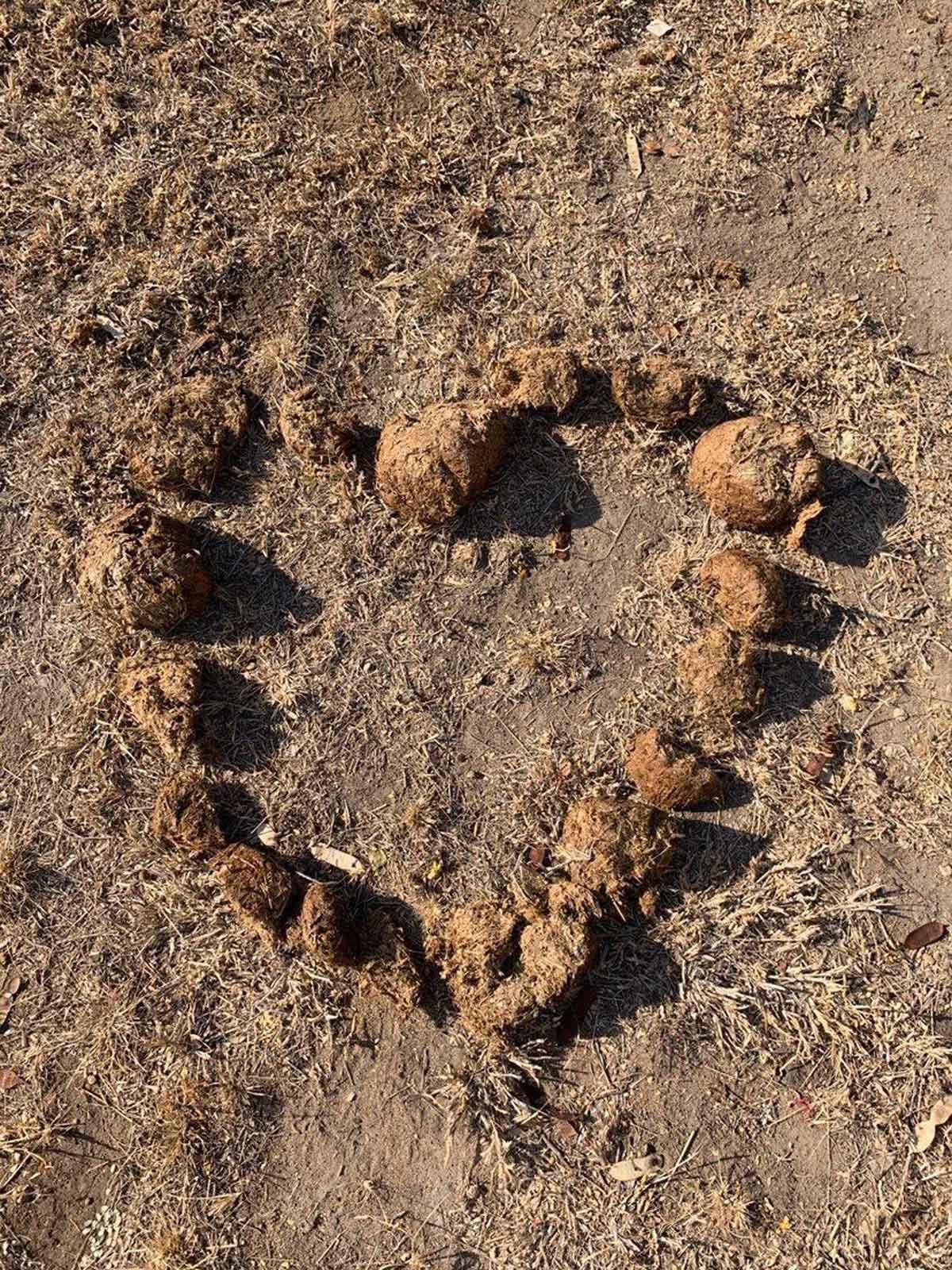Heart Circle of Dung