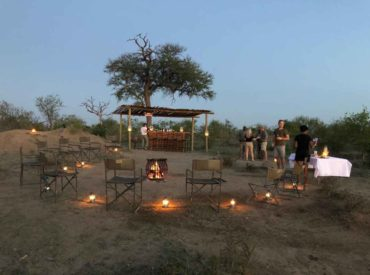 Twice a year our product guru arranges an Agent's educational to the gnarled thickets of the Kruger.  The idea of an educational is to introduce agents to our unique camps and lodges. This Kruger Mega-ed gives agents the opportunity to experience the atmosphere, game viewing potential and overall guest experience at the lodges within […]