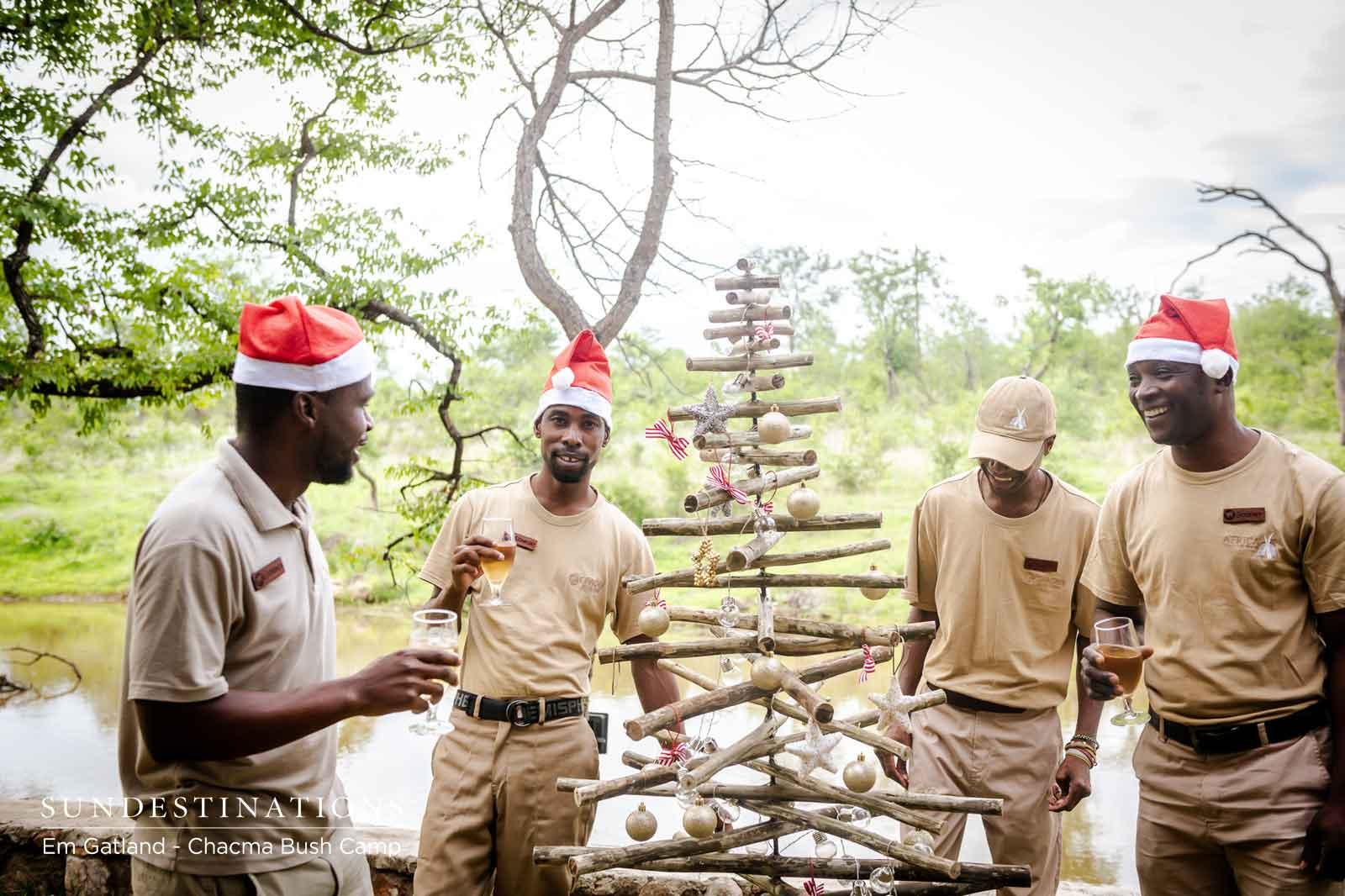 Trees at Chacma Bush Camp