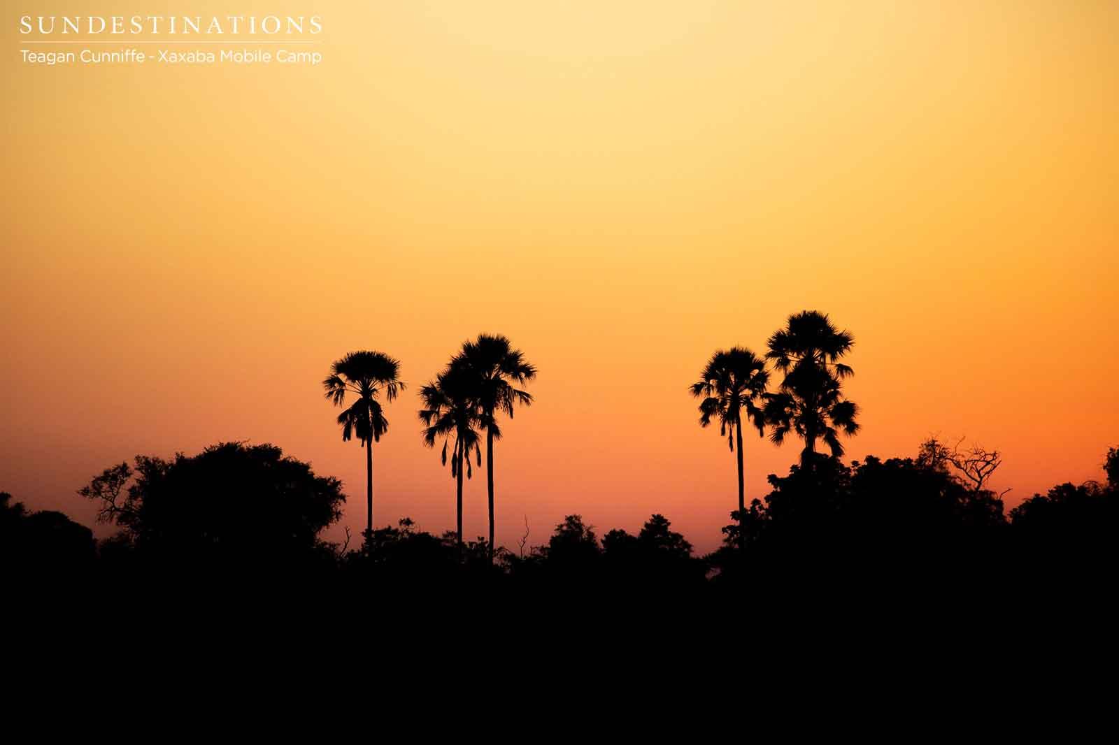 Sunsets at Xaxaba