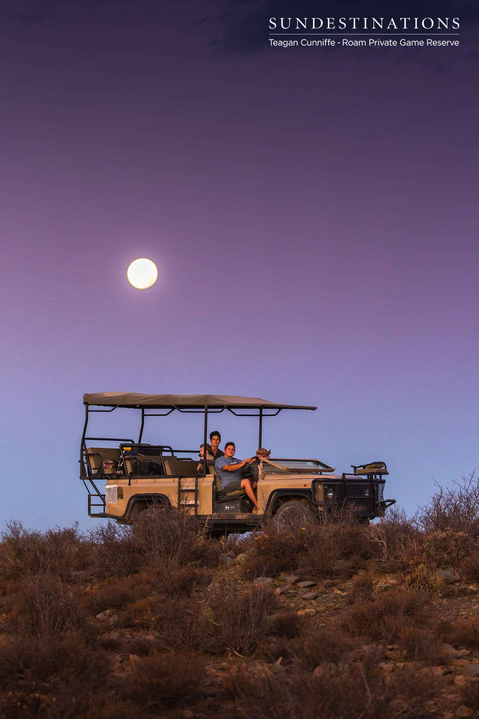 Roam Private Game Reserve Game Drives