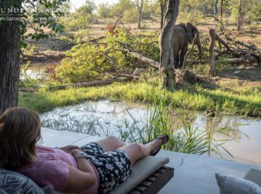 For travellers looking to induce some travel envy on their Instagram timelines, nothing beats the African bush. At Chacma Bush Camp in the Greater Kruger there are five particularly Insta-worthy locations that will have your followers swooning. The private and secluded Maseke Balule Game Reserve boasts some of the most staggering views in the whole […]