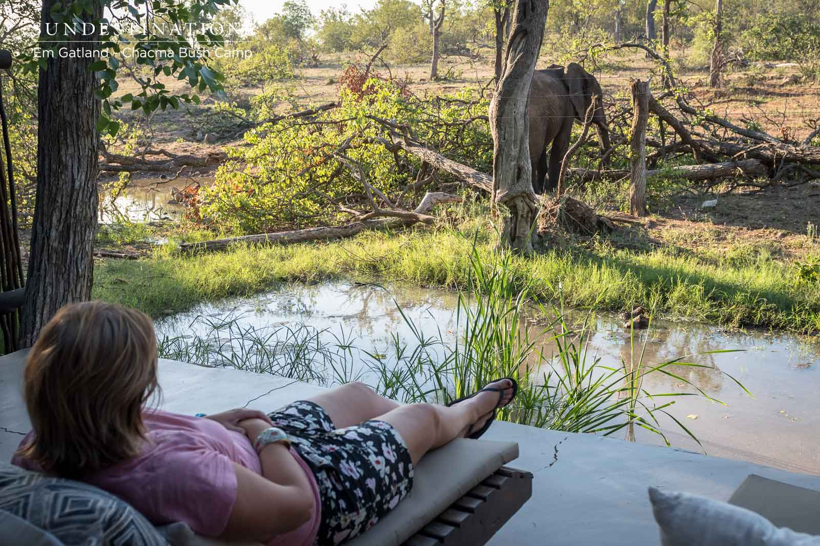 Five Insta-worthy Spots at Chacma Bush Camp