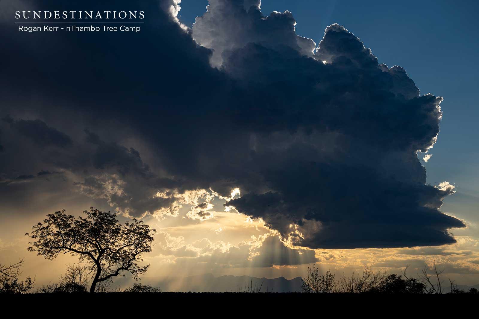 nThambo Sky in the Klaserie