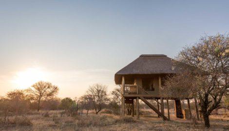 nThambo Tree Camp Chalets