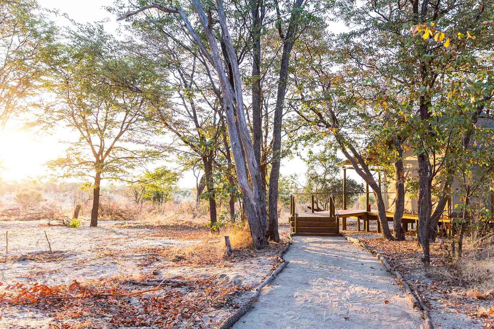 Mankwe Tented Retreat Moremi